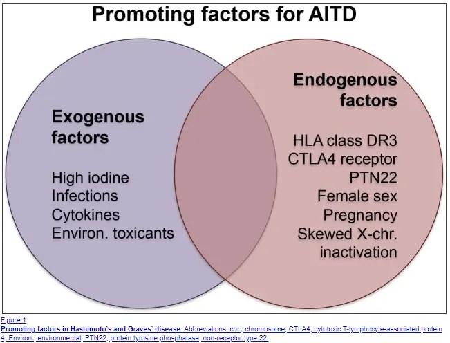 factors that promote the development of hashimotos thyroiditis