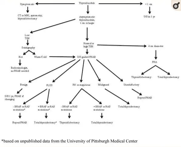 thyroid nodule treatment and evaluation algorithm