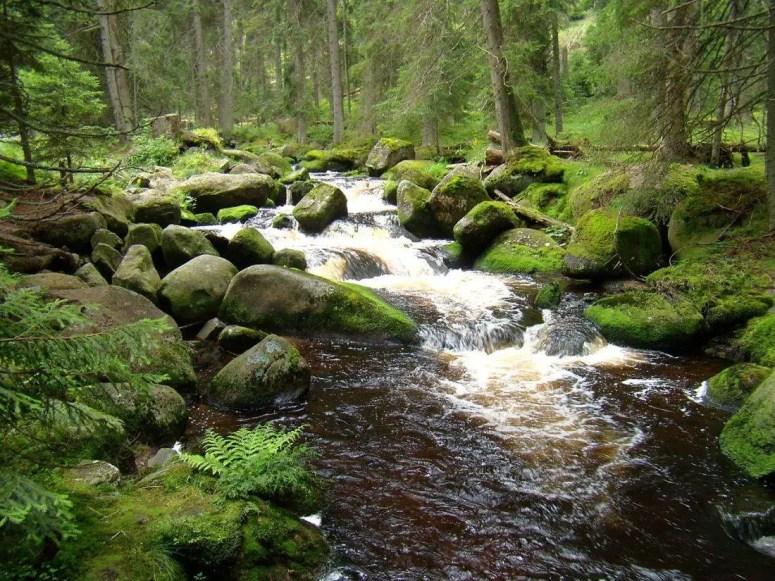 Harmerský potok