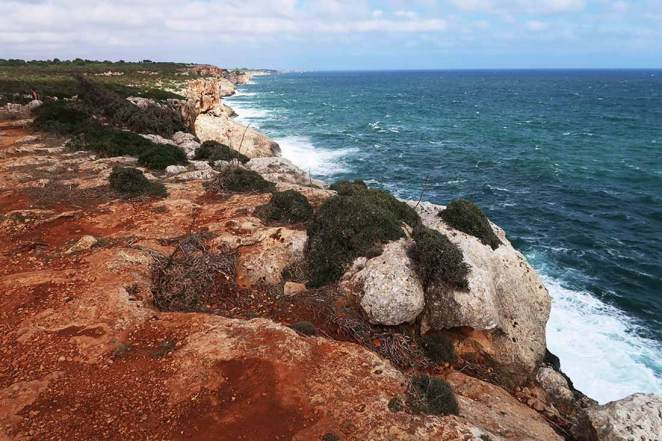 100 km Mallorca trails.