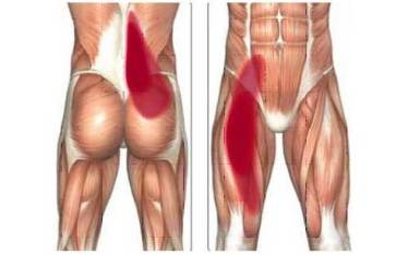 Vzpriamovače chrbtice a ohýbače bedrových kĺbov