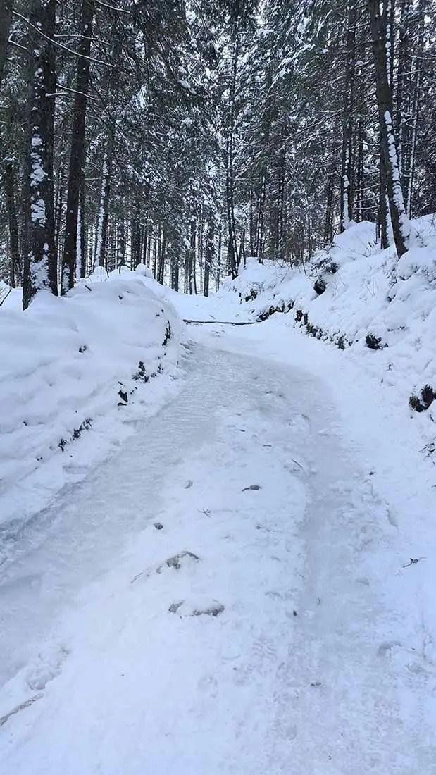 MTB: Zimný gerlaching na Brnčalku