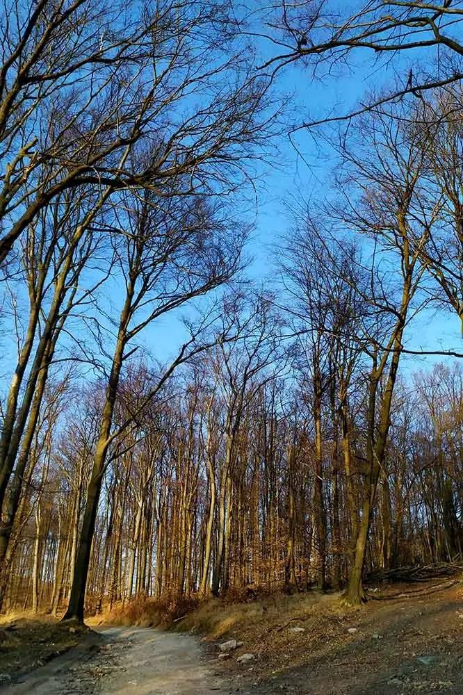 Malokarpatský výlet na Sakrakopec miesto leteckej havárie