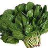 Fierberea legumelor