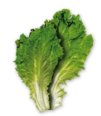 Salată cu smatană