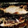 Saramură de biban