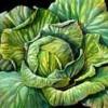 Salată de varză nouă cu nuci