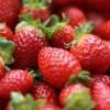 Prajitura cu fructe si crema de mascarpone