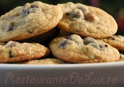 Prajiturele_cu_ciocolata_si_fructe_uscate_06