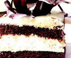 Tort_rapid_cu_ciocolata_si_frisca