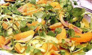 Salata de fenicul cu portocala