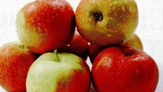 Prajitura cu mere rase