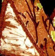 Prajitura_cu_ciocolata_si_martipan