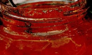 dulceata de caise cu lamaie