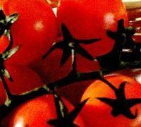 Salata americana de rosii