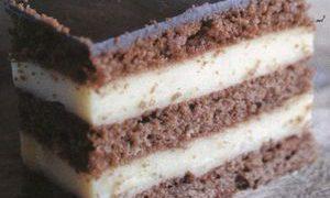 Prajitura_cu_budinca_si_ciocolata