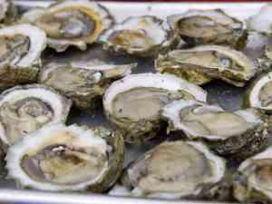 oysters-6dd355b6781b355b686e8d560088e26aec1477d2-s6-c30