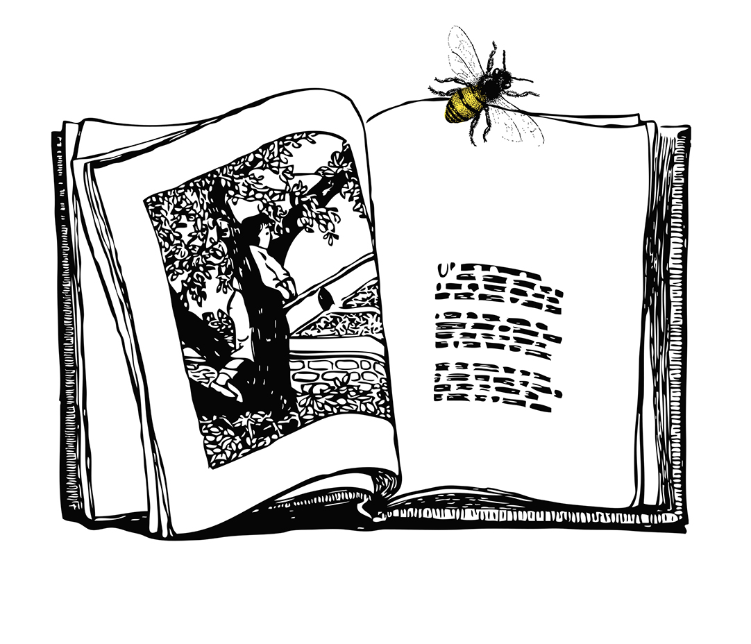 Book & Bee Illustration at Restoration Yard