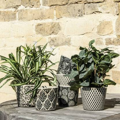 Old Style Dutch Pots Black Assorted By Grand Illusions | Restoration Yard