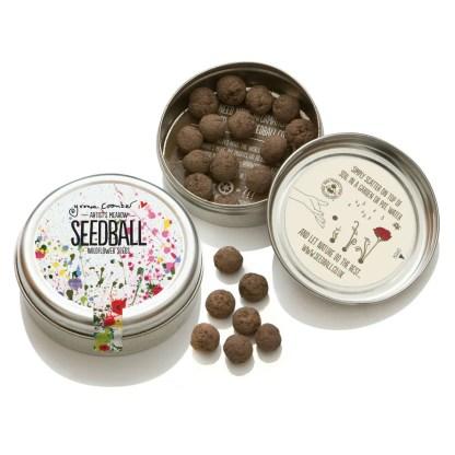 Seedball Artist Meadow | Seedball | Restoration Yard