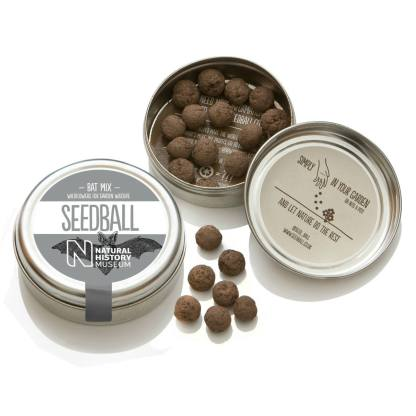 Seedball Bat Mix | Seeds for Bats | Restoration Yard