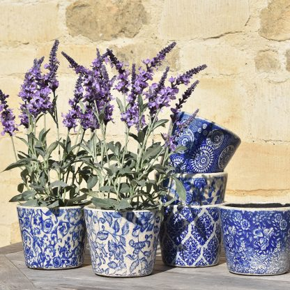 Old Style Dutch Pots Blue Assorted By Grand Illusions   Restoration Yard