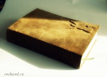 leather cover bible2