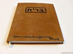 jurnal piele maro2