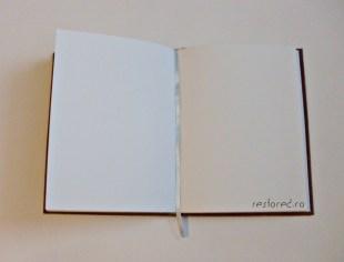 jurnal piele maro3