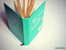 Biblie de piele verde2