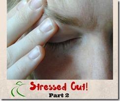 stressedoutpt2