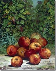 apples-316939_1280