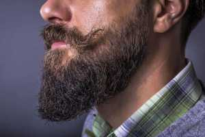 best conditioner for a beard review