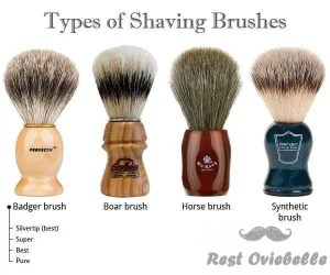 hair type of shaving brush