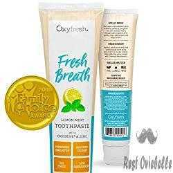 Oxyfresh Maximum Fresh Breath Lemon Mint Toothpaste