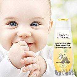 Babo Botanicals Moisturizing Baby Shampoo and Wash 1