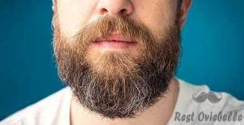 man's long beard with brown and gray hairs - beard growth s and pictures Things To Consider While Buying The Best Beard Growth Products And Beard Care Kit
