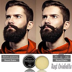 DapperGanger Beard Kit 1