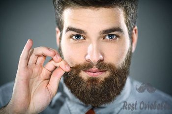 handsome bearded man. - beard care s and pictures Things To Consider When Buying The Best beard Care Kit
