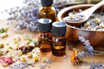 Essential Oil Vs. Castor oil