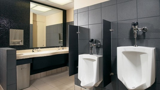 Easy To Install Wall Hung Urinal Divider Kits For Sale