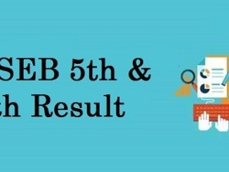 BSEB 5th & 8th Result