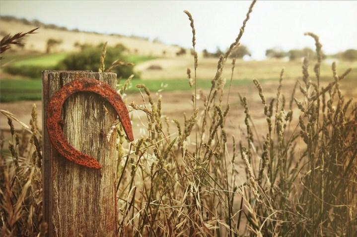 ferradura da sorte fixada em uma cerca