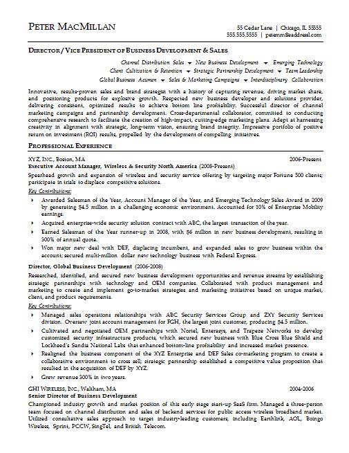 account executive resume example - Examples Of Executive Resumes