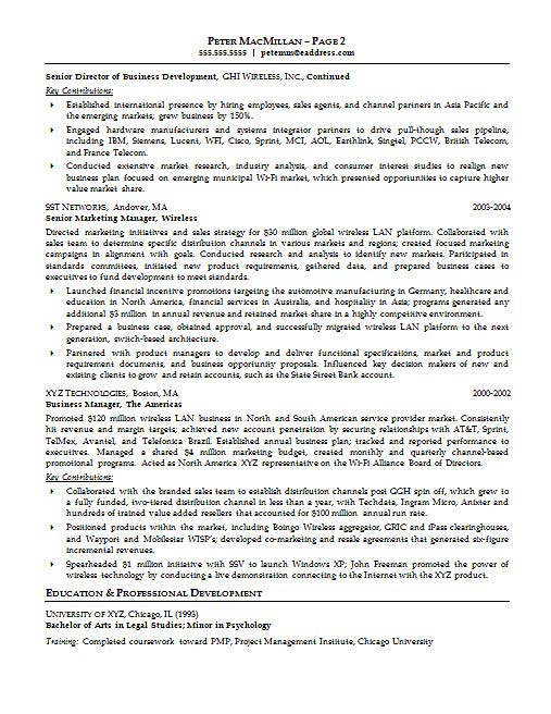 executive resume example - Executive Resume Example