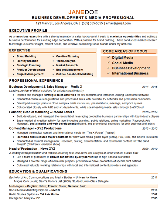 sample digital business development executive resume