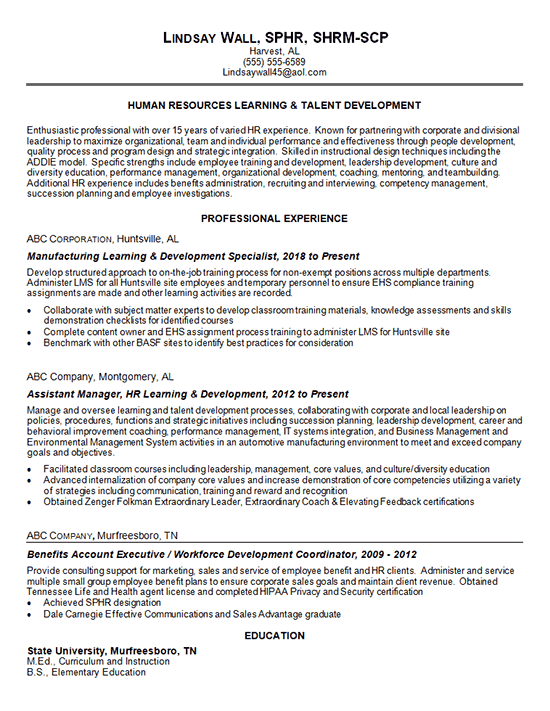 example of a professional resume summary