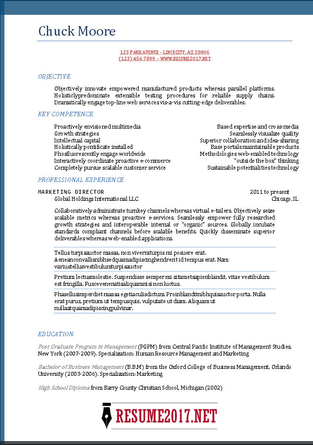 resume sample template 2017