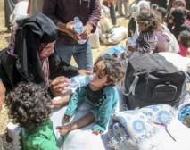 Siria Resumen 116