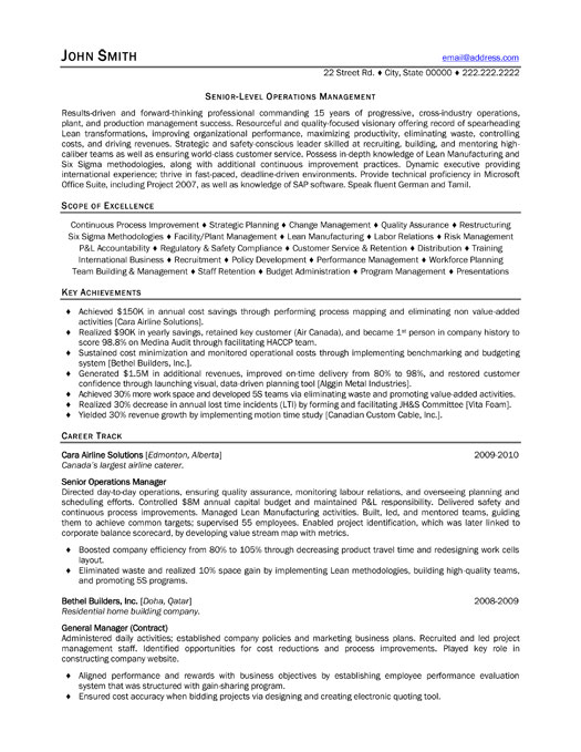 executive project consultant resume example